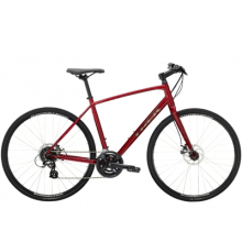 FX 1 Disc by Trek in Fort Collins CO
