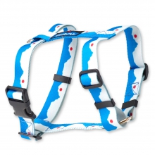 Buddy Harness by Kavu in Santa Barbara Ca