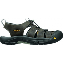 Men's Newport by Keen in Glenwood Springs CO