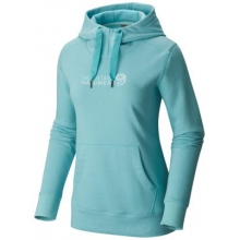 Graphic Logo Pullover Hoody by Mountain Hardwear in Opelika Al