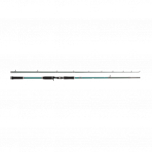 Beast X Casting Rod | 1.98m | Heavy | EVA | Model #BEAST X Pike 662 HP 45-100g Jerk Casting by Abu Garcia