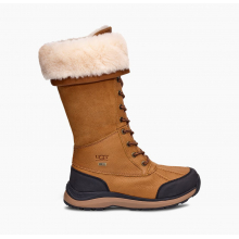 Women's Adirondack Boot Tall Iii by Ugg in Knoxville TN