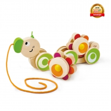 Walk-A-Long Caterpillar by Hape