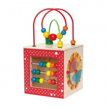 Discovery Box by Hape