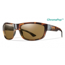 Dover Havana ChromaPop+  Polarized Brown by Smith Optics in Charleston Sc