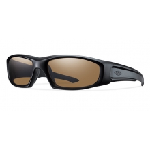 Hudson Elite Black Polarized Brown