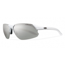 Parallel D Max - Polarized Platinum by Smith Optics