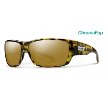 Frontman Flecked Green Tortoise ChromaPop Polarized Bronze Mirror by Smith Optics in Chino Ca