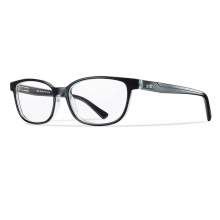 Goodwin Black Crystal by Smith Optics