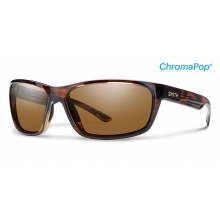 Redmond Tortoise ChromaPop+  Polarized Brown by Smith Optics in Sandy Ut