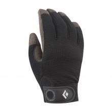 Crag Gloves by Black Diamond in Ames Ia