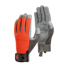 Crag Gloves by Black Diamond in Revelstoke Bc
