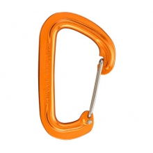 Neutrino Carabiner by Black Diamond in Aspen Co