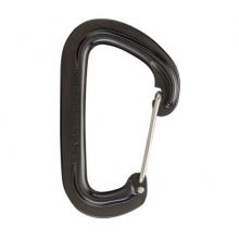 Neutrino Carabiner by Black Diamond in Lake Geneva Wi