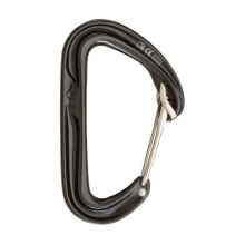 HoodWire Carabiner by Black Diamond in Columbia Sc