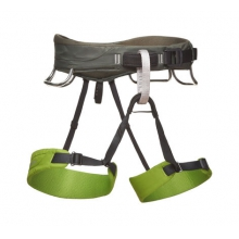Momentum Harness - Men's by Black Diamond in Glenwood Springs CO