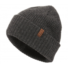 Porter Fork Beanie by Black Diamond in Surrey Bc