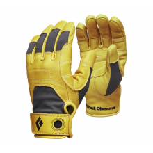 Transition Gloves by Black Diamond