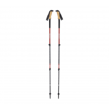 Trail Ergo Cork Trek Poles by Black Diamond in Sioux Falls SD