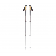 W's Alp Carbon Cork Trek Poles by Black Diamond