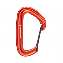 Litewire Carabiner by Black Diamond in Iowa City IA