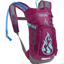 Mini M.U.L.E. 50 oz by CamelBak in Branford Ct