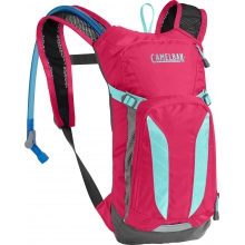 Mini M.U.L.E. 50 oz by CamelBak in Boulder Co