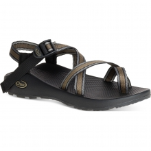 Men's Z2 Classic by Chaco in Golden Co