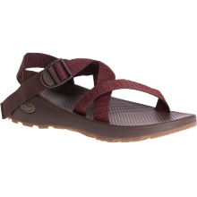 Men's Z/Cloud by Chaco in Fort Morgan Co