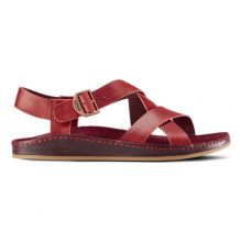 Women's Wayfarer by Chaco in Arcadia Ca