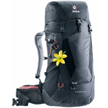 Futura 24 SL by Deuter in Fort Collins Co
