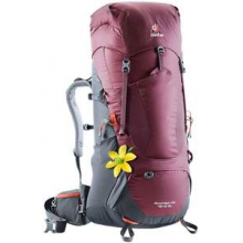 Aircontact Lite 60 + 10 SL by Deuter in Dallas TX