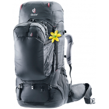 Aviant Voyager 60+10 SL by Deuter in Berkeley Ca