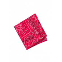 Men's BugsAway Woven Bandana by ExOfficio in New York Ny