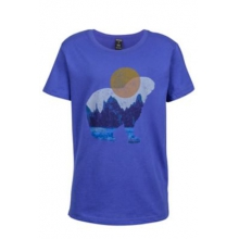 Boy's Alpine Zone Tee SS by Marmot