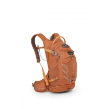 Raven 14 by Osprey Packs in Rogers Ar