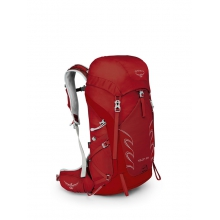 Talon 33 by Osprey Packs in Nelson Bc