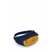 Daylite Waist Pack by Osprey Packs in Alamosa CO