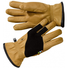 Ridgeway Glove by Smartwool