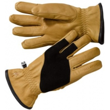 Ridgeway Glove by Smartwool in Little Rock Ar