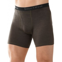Men's NTS Micro 150 Pattern Boxer Brief