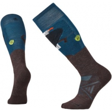 PhD Ski Medium: Charley Harper Glacial Bay Eagle by Smartwool