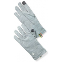 Merino 250 Glove by Smartwool in Glen Mills Pa