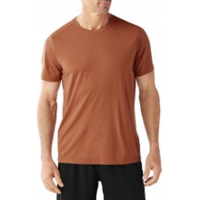Men's Merino 150 Pattern Tee by Smartwool in San Diego Ca
