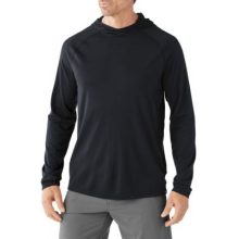 Men's Merino 150 Pattern Hoody by Smartwool in Encino Ca