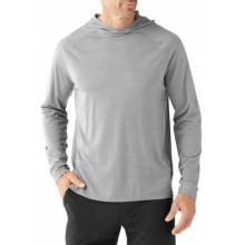 Men's Merino 150 Pattern Hoody by Smartwool in Chandler Az