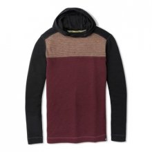 Men's Merino 250 Color Block Hoodie by Smartwool in Canmore Ab