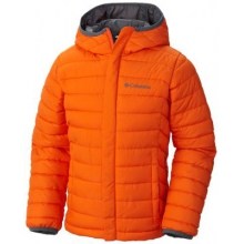 Youth Boy's Toddler Powder Lite Puffer by Columbia