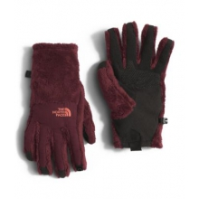Women's Denali Thermal Etip Glove by The North Face in Bee Cave Tx