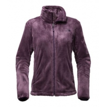 Women's Osito 2 Jacket by The North Face in Chattanooga Tn